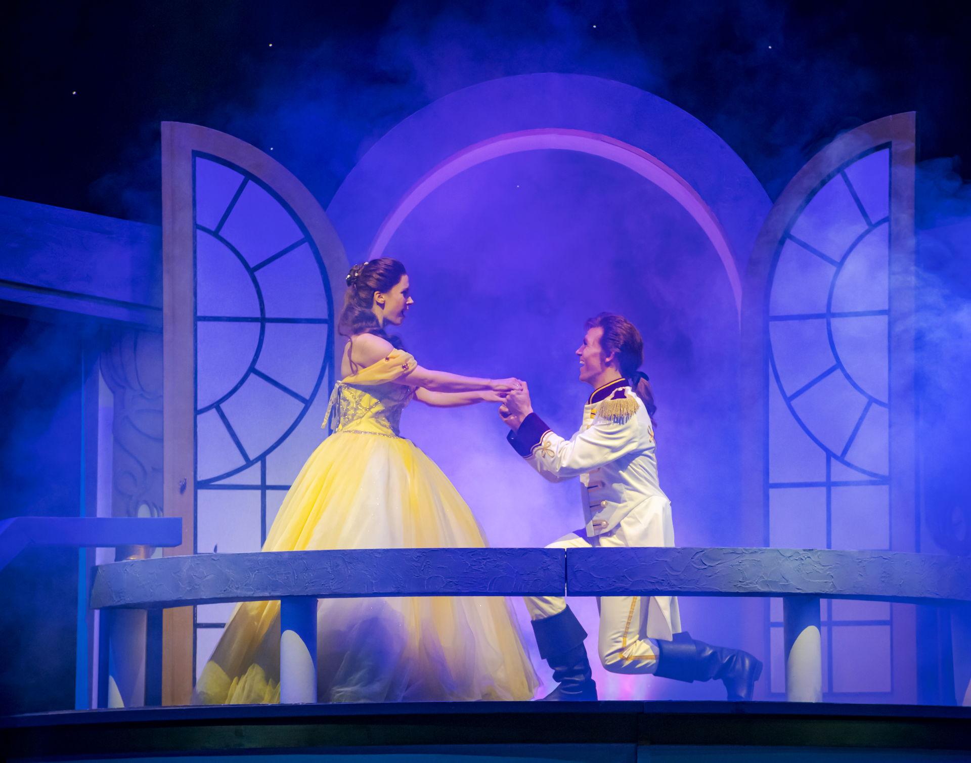 Titus en Fien toveren Prins Dinand tijdens zijn zoektocht naar een koningin om tot een lelijk beest. Tijdens één van haar avonturen komt de mooie en slimme Belle hem tegen. Zal de prins zijn ware liefde vinden in deze magische familiemusical?