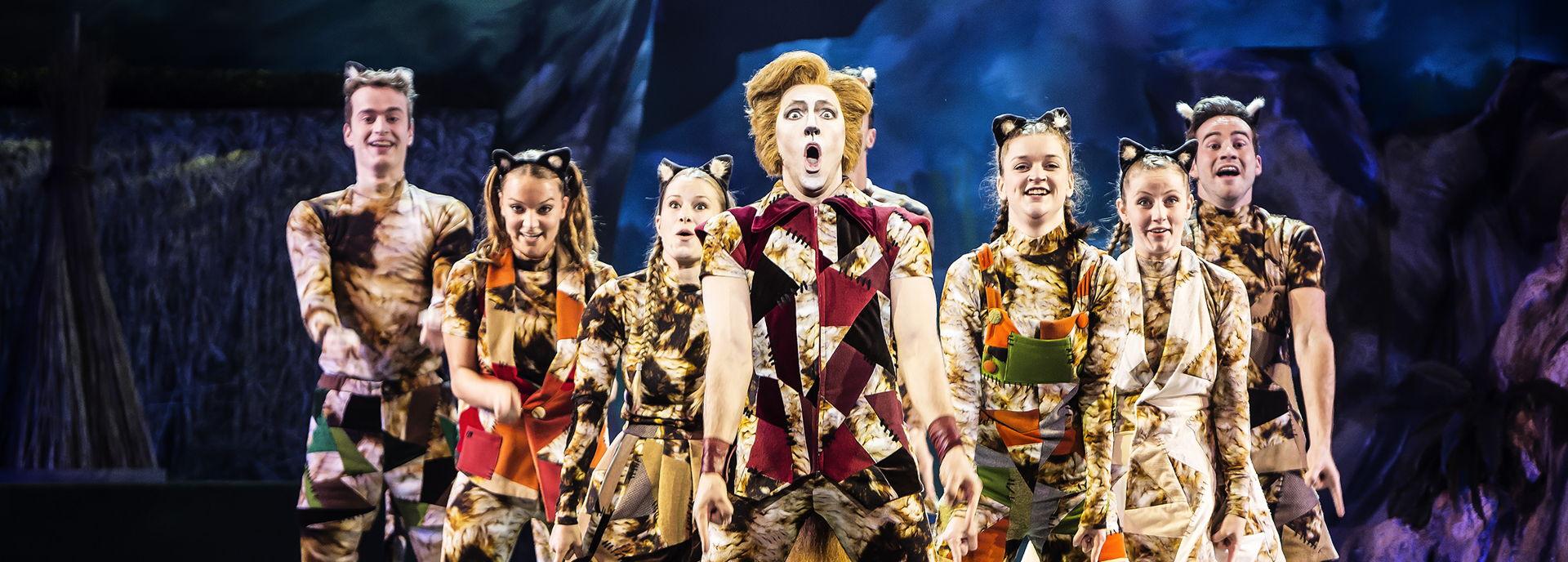 Het Nationaal Jeugd Musical Theater speelde in 2018 de Gelaarsde Kat.